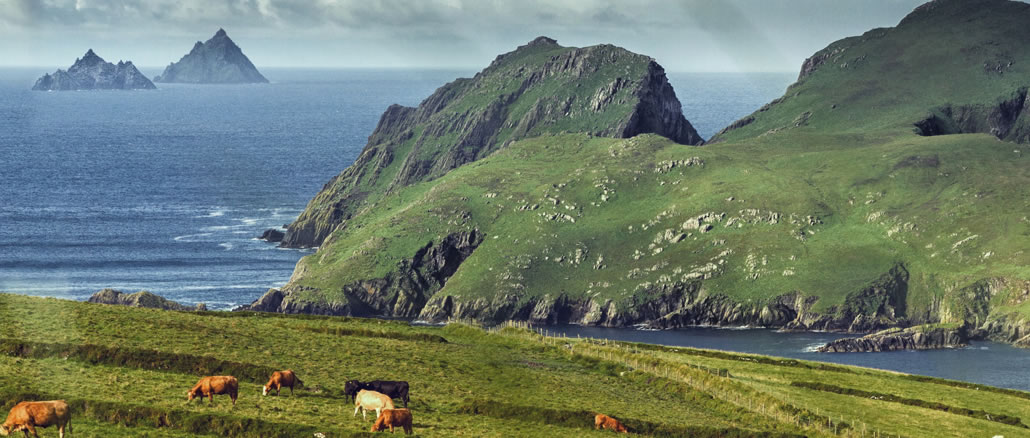 About Stay in Kerry