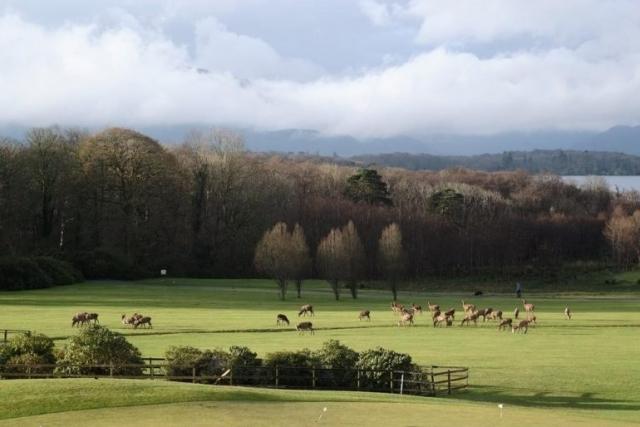 Castlerosse Holiday Homes Views