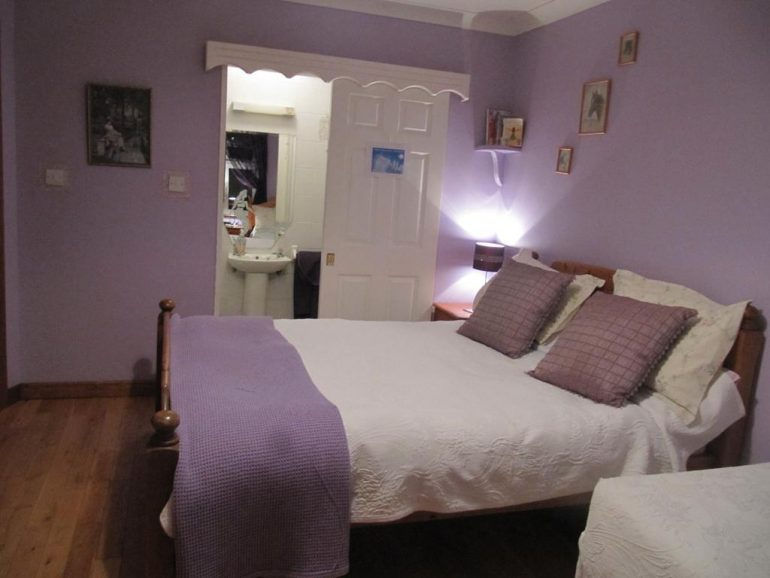 The Plough Ventry B&B Bedroom 1