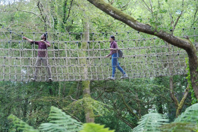 sky walk at Kells Bay House Ring of Kerry Bed and Breakfast