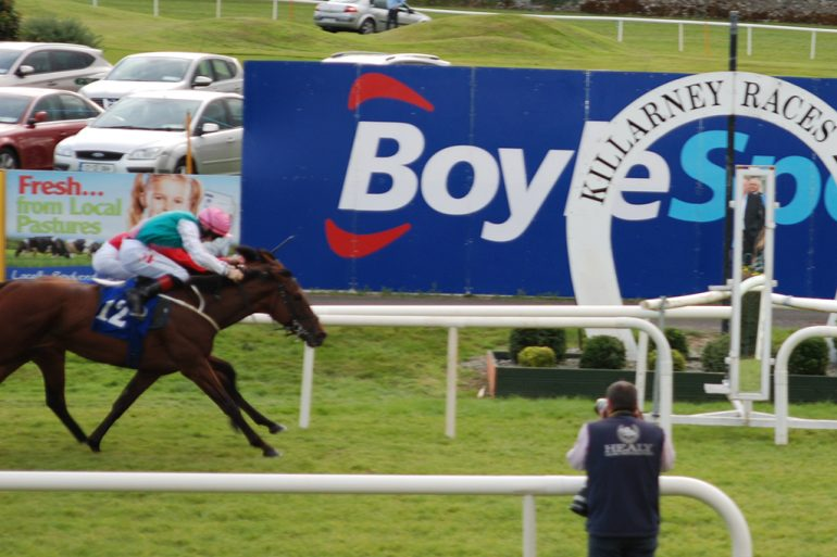 Pipped at the post killarney races