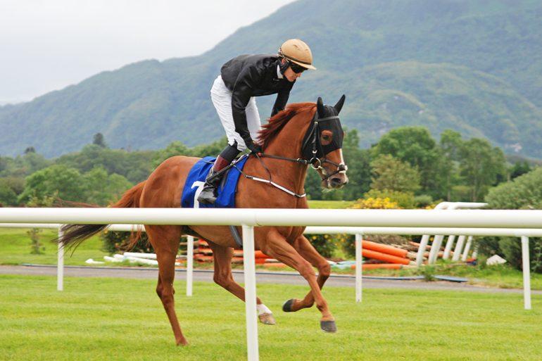 Emmet McNamara on Endless Summer Killarney races